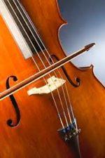 Pon Michaël – cours de violon / violoncelle / alto
